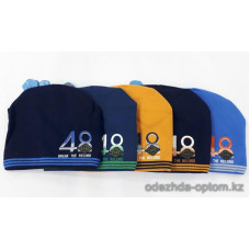 c1-0189 Демисезонная шапка на мальчика, 1 пачка (5 шт)